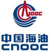 中国海洋石油集团